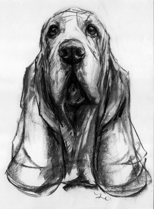 PaintMyDog - Modern Contemporary Dog Portraits Pet Paintings And Dog Prints